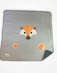 renard-orange-copie